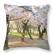Cherry Blossoms 2013 - 099 Throw Pillow