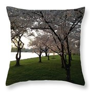 Cherry Blossoms Along The Potomac Throw Pillow