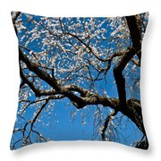 Cherry Blossoms And Sky Throw Pillow