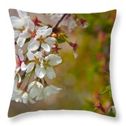 Cherry Blossoms Galore Throw Pillow