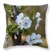 Cherry Blossoms In White Throw Pillow