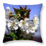 Cherry Blossoms Throw Pillow