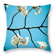 Cherry Blossoms With Sky Throw Pillow by Raimond Klavins