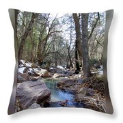 Cherry Creek Throw Pillow