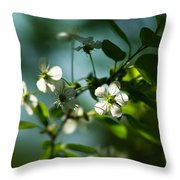 Cherry In Bloom - Featured 3 Throw Pillow