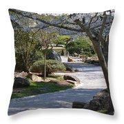 Cherry Lane Series  Picture C Throw Pillow