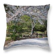 Cherry Lane Series  Picture G Throw Pillow
