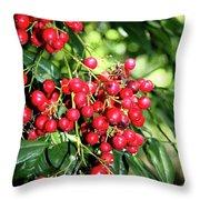 Cherry Laurel  Throw Pillow