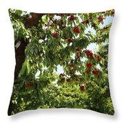 Cherry Orchard  Throw Pillow