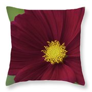 Cherry Petals Throw Pillow