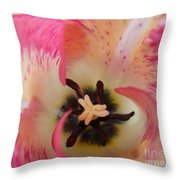 Cherry Pink Swirl Throw Pillow