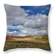 Cherry Springs Area 1 Throw Pillow by Roger Snyder