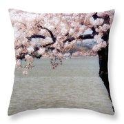 Cherry Tree And The Potomac Throw Pillow