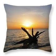 Chesapeake Bay Driftwood At Sunset Throw Pillow