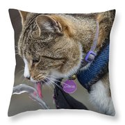 Chester At The Drinking Fountain Throw Pillow