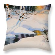 Chester Creek Shadows Throw Pillow