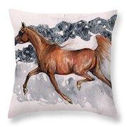 Chestnut Arabian Horse 2014 11 15 Throw Pillow