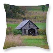 Chestnut Hill Autumn Throw Pillow