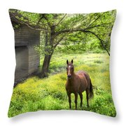 Chestnut Horse In A Sunny Meadow Throw Pillow