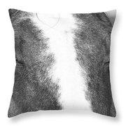 Chestnut Throw Pillow