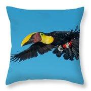 Chestnut-mandibled Toucan Flying Throw Pillow