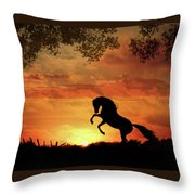 Chestnut Sunset Throw Pillow