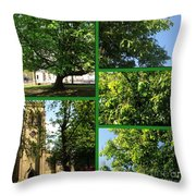 Chestnut Trees At Christchurch Throw Pillow