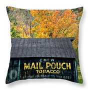 Chew Mail Pouch 2 Throw Pillow
