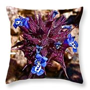 Chia At Dante's View In Death Valley Np-ca  Throw Pillow