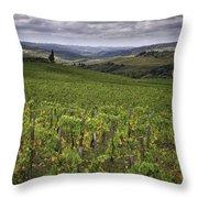 Chianti Region Of Tuscany Throw Pillow