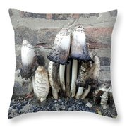 Chicago Alley Shrooms Throw Pillow