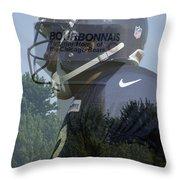 Chicago Bears Bourbonnais Il Summer Home Throw Pillow