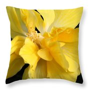 Chicago Botanical Gardens - 71 Throw Pillow by Ely Arsha