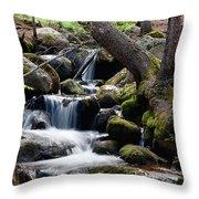 Chicago Creek #2 Throw Pillow
