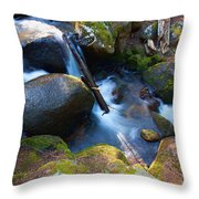 Chicago Creek #3 Throw Pillow