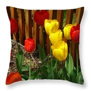 Chicago In The Spring Throw Pillow