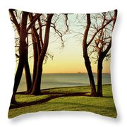 Chicago Lakefront Trail And Lincoln Throw Pillow