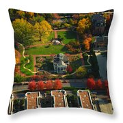 Chicago Old Meets New Throw Pillow