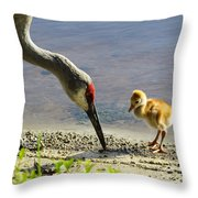 Chick At The Lake Throw Pillow