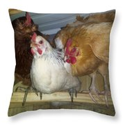 Chick Trio  Throw Pillow