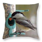 Chickadee And A Big Nut Throw Pillow