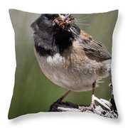 Chickadee Bringing Lunch To The Kids Throw Pillow