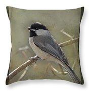 Chickadee Early Bird II Throw Pillow