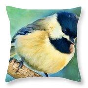 Chickadee Greeting Card Size - Digital Paint Throw Pillow