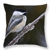 Chickadee Pictures 228 Throw Pillow