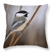 Chickadee Pictures 316 Throw Pillow