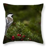 Chickadee Pictures 373 Throw Pillow