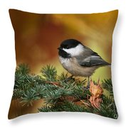 Chickadee Pictures 375 Throw Pillow