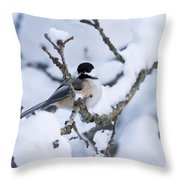 Chickadee Pictures 507 Throw Pillow