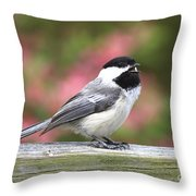 Chickadee Song Throw Pillow